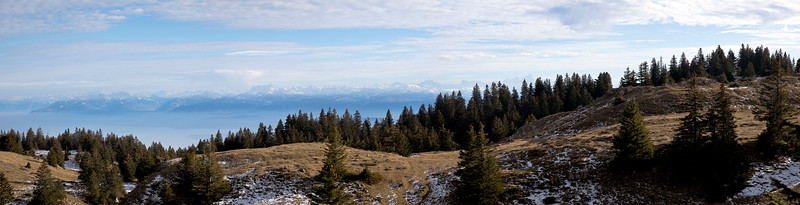 View towards the Alps