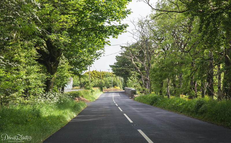 Typical Irish countryside road-maybe a little wider than typical.