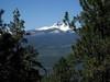 05-trail view