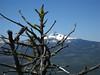 07-trail view