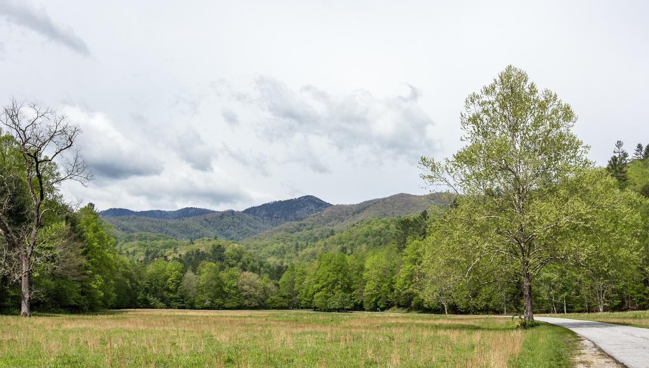 Cataloochee Valley, GSMNP