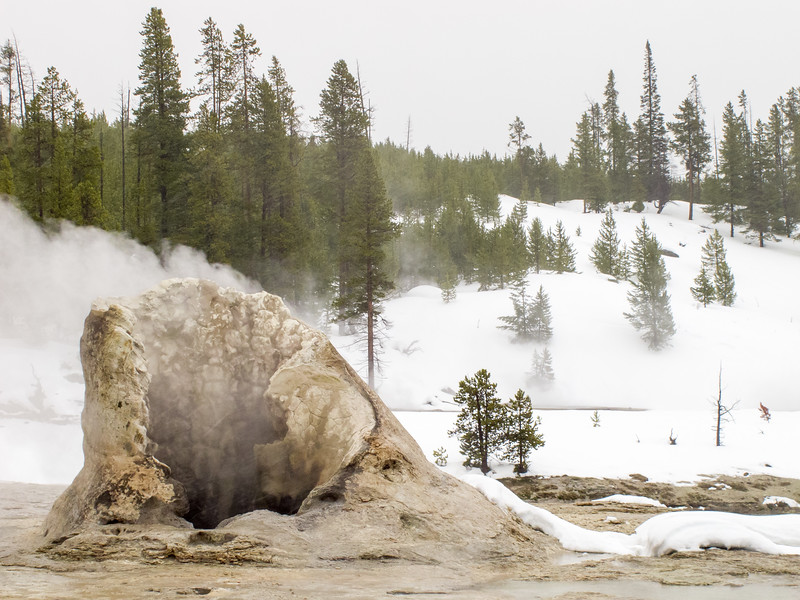 Yellowstone National Park, Biscuit Basin