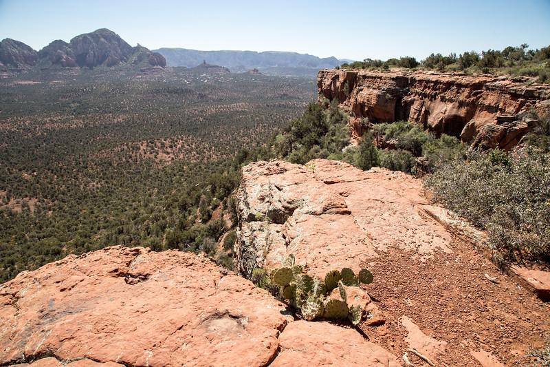 Doe Mountain Trail