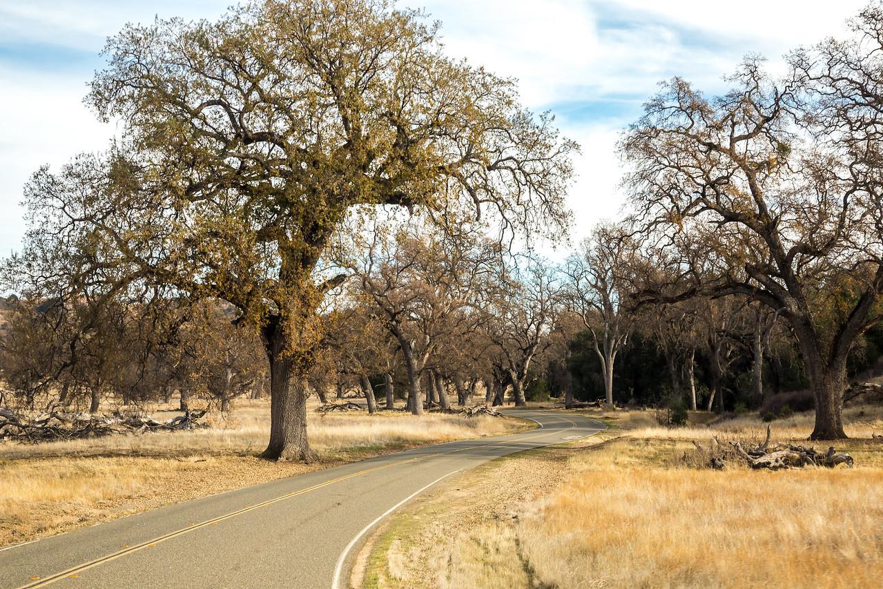Nacimiento-Fergusson Road