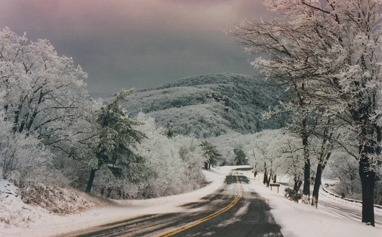 Shenadoah National Park along the Blue Ridge Pkwy.  Somewhere south of Winchester, VA.
