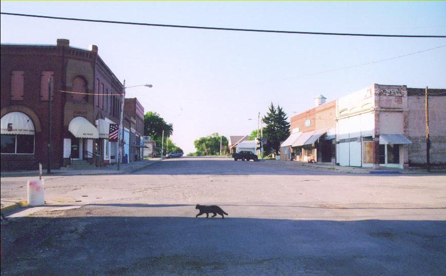 This is main street in Lebanon, Kansas.  As I drove through town I didn't see a single person.   Despite the black cat crossing my path, I didn't encounter any bad luck.