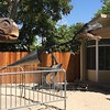 At the L.A. County fair,  The hillside behind the flower and wine building was mechanically animated dinosaurs this year.