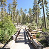 At Mount Lassen National park, at the Manzanita Lake campground.  The Lake trail.