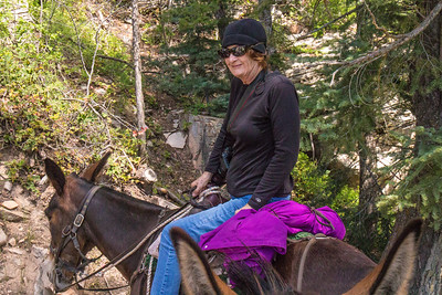 Paula taking a break on our mule ride down North Kaibab trail