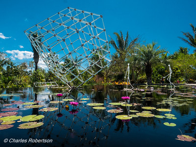 Reflections on Glass: Fräbel in the Garden (Naples Botanical Gardens)