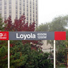 Fall color at Loyola Station.