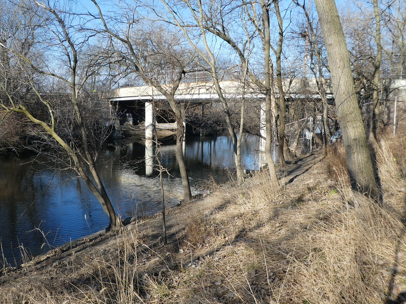 Along the North Branch of the Chicago River, in Ronan Park.