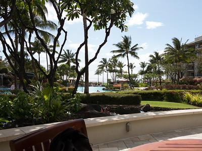 Maui May 2012