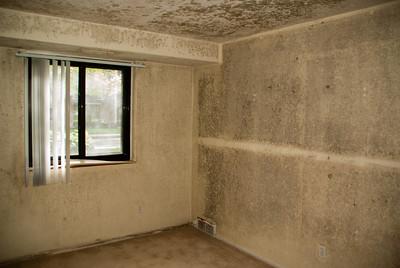 Condo Renovation 10 05052013