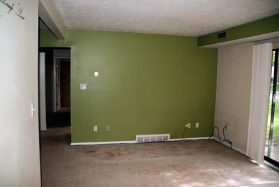 Condo Renovation 03 05052013