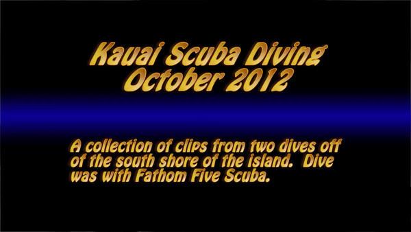 Kauai Scuba Diving.  Depth varied from 60' to 90' Kauai Vacation 2012