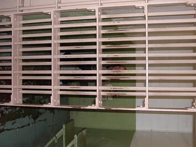 san francisco alcatraz sarah in prison cell