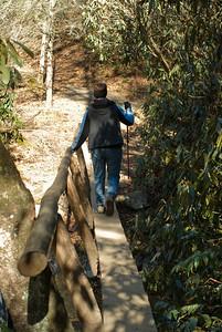 Hike to Abram Falls off of Cades Cove Loop road