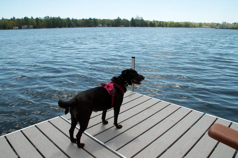 Lake House Weekend