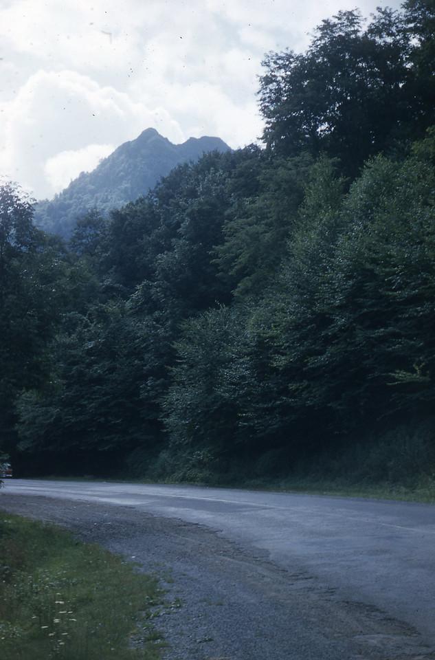 Driving through the Smoky Mountains.