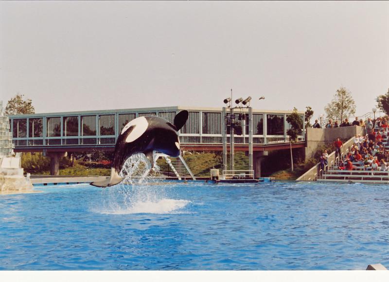 1990 San Diego (71)