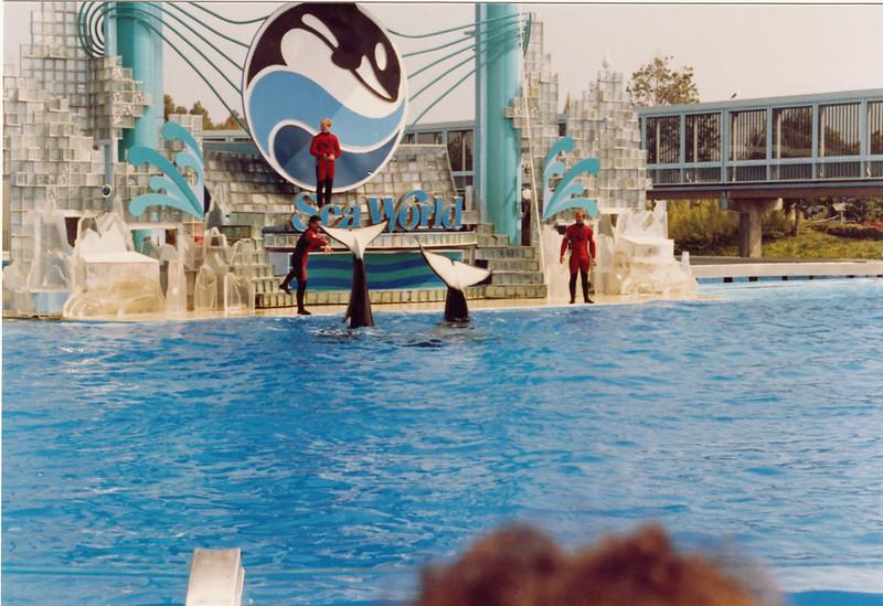 1990 San Diego (68)