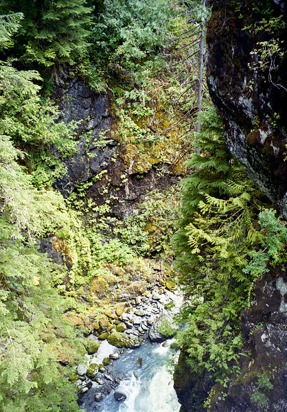 A view of the gorge below the bridge