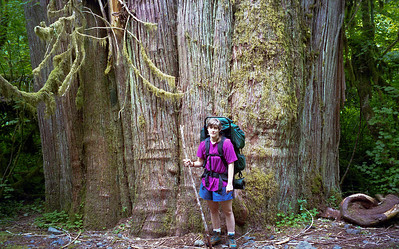 Barb standing in front of really huge cedar.