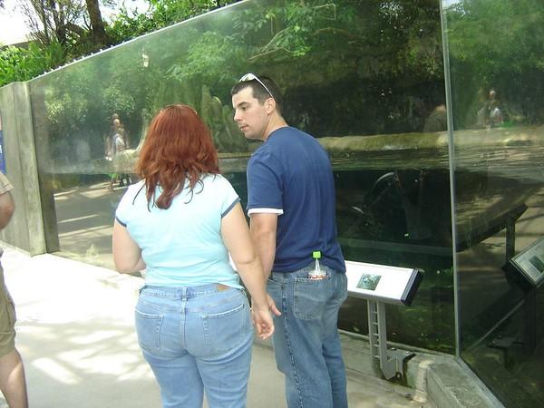 1 FL Aquarium 17