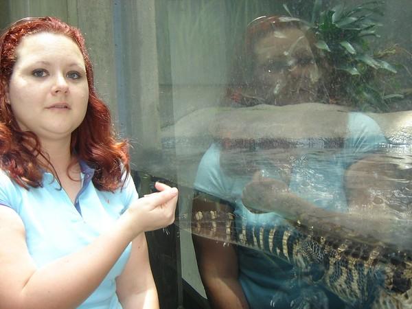 1 FL Aquarium 15