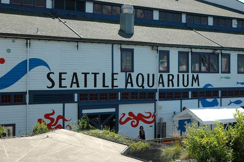 Seattle on Saturday - 075