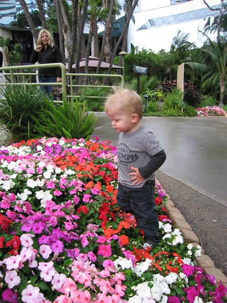 Owen's still trying to understand borders - what's a sidewalk and what's a flower bed is still hard to understand