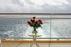 I bought my wife some roses since I didn't get her any on Valentine's Day. This is also a view off the back of the ship from our veranda.