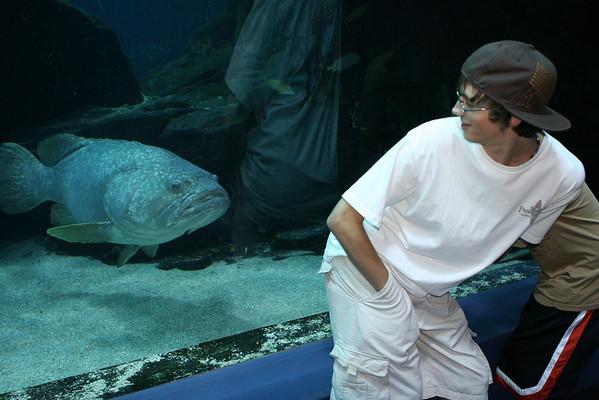 2008 World of Coke Georgia Aquarium August 6