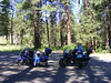 A stop in the Malhuer National Forest for a pit stop...