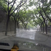 a tree lined street in Xi'an, China