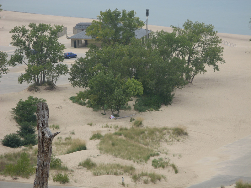 Warren Dunes Park in Michigan.  That little white dot is Titi Hilda waiting for us to run down the dune.