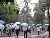 200906 David's Trip to China 132