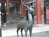 200906 David's Trip to China 149