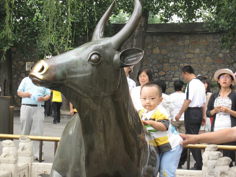 200906 David's Trip to China 256