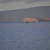 Two whales visible in the shadow of of Molokini.  Unbelievably majestic!!