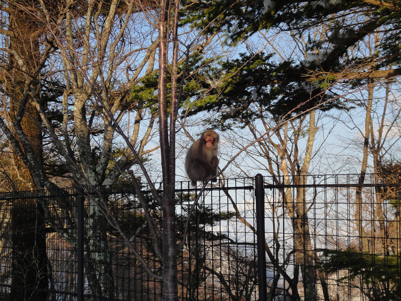 2010-04-17 Edo-world Nikko (427)