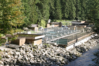 and the Capilano Salmon Hatchery.