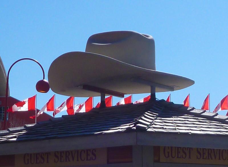 A Tim-sized hat