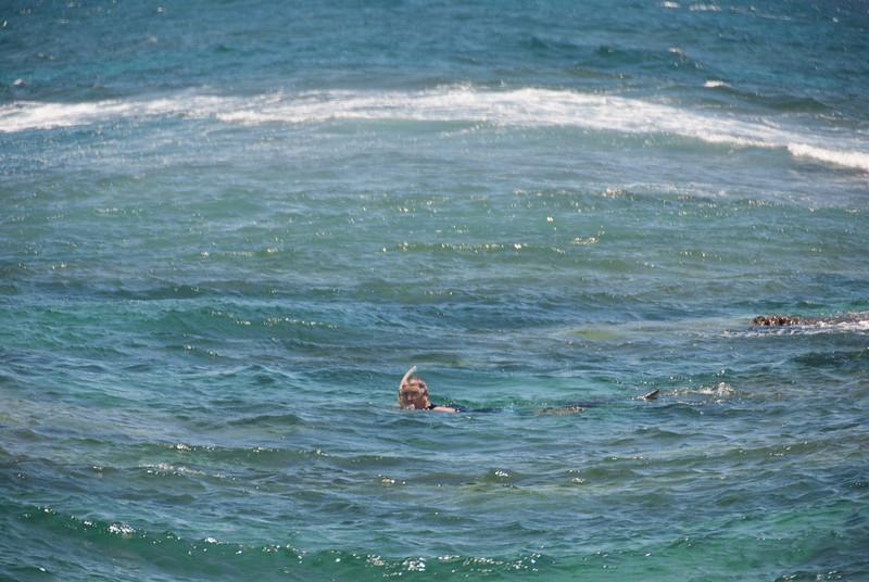 A Sea Monster (Tim)
