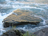 20101009 Niagara Falls (74)