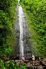 Water cascades down Manoa Falls into a small pool.