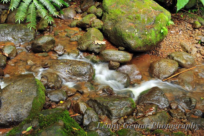 Gentle stream beside the trail.