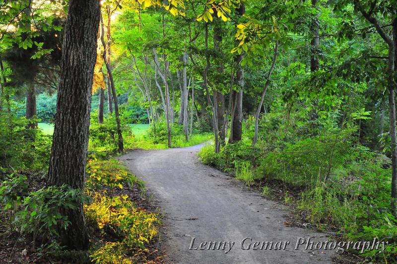 Point Mallard hiking trail looking west.