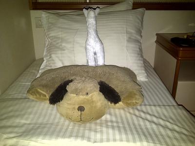 Two friends that Kari brought along: llama & pillow pet.